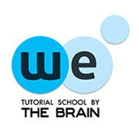 the_brain.jpg